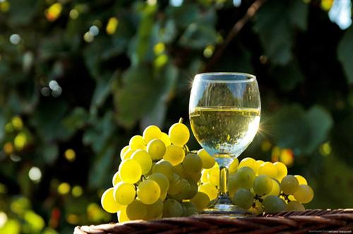 Feira do Vinho Alvarinho