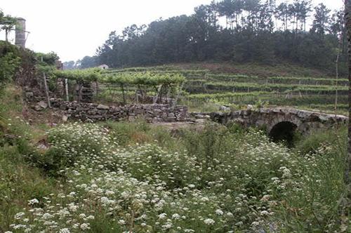 """Projecto Nº 2004100028713 """"Zona de Lazer de Lages"""""""