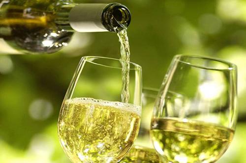 Promoção do Vinho Alvarinho